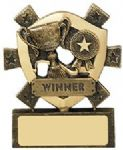 Winner Mini Shield Award